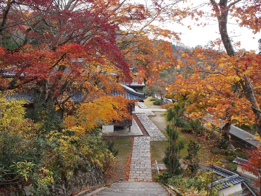 f:id:ushinabe1980:20141123114343j:image:w450