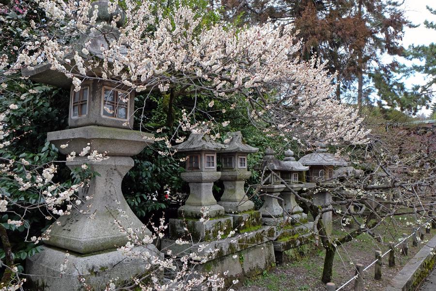 f:id:ushinabe1980:20150304124301j:image:w450