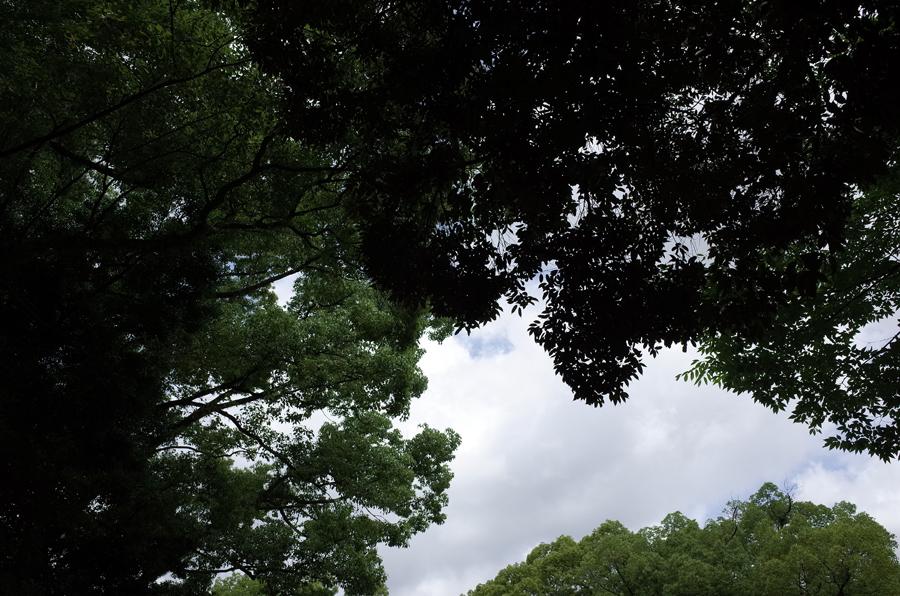 f:id:ushinabe1980:20150713102810j:image:w220