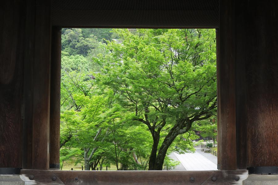 f:id:ushinabe1980:20160604101236j:image:w450