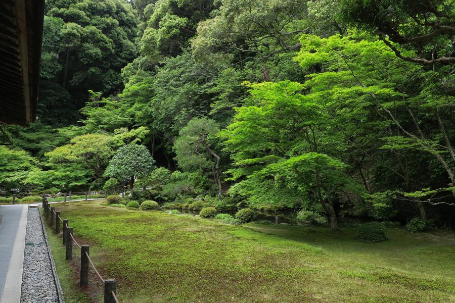 f:id:ushinabe1980:20160604103912j:image:w450