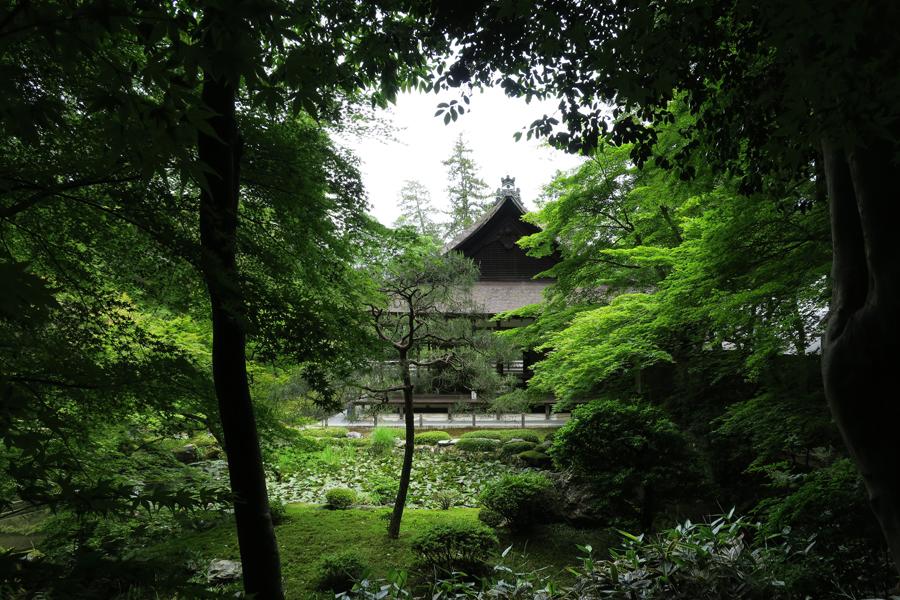 f:id:ushinabe1980:20160604104150j:image:w450