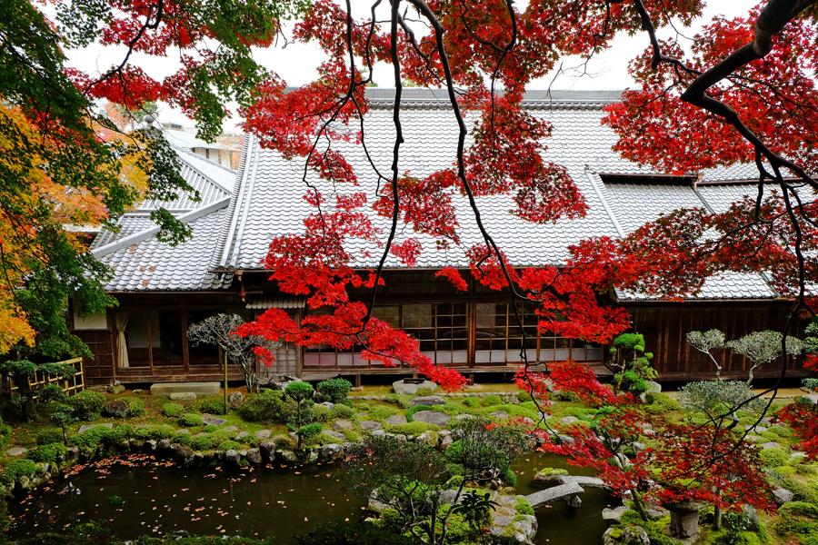 f:id:ushinabe1980:20161123115019j:image:w450