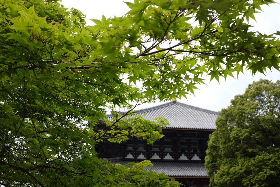 f:id:ushinabe1980:20170512112051j:image:w220