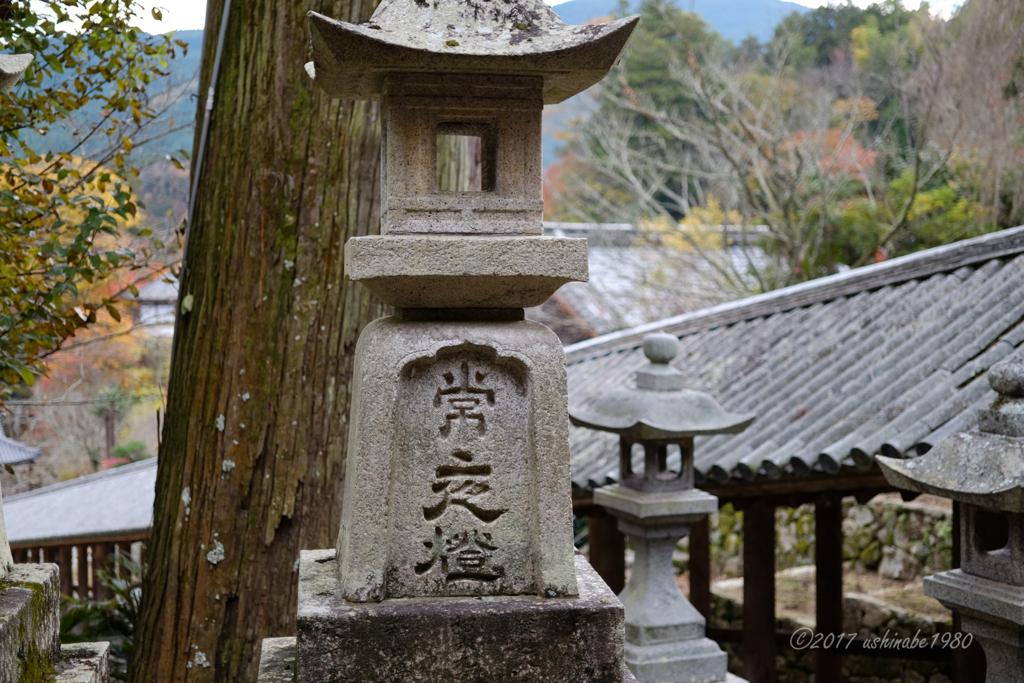 f:id:ushinabe1980:20171121125237j:image:w600