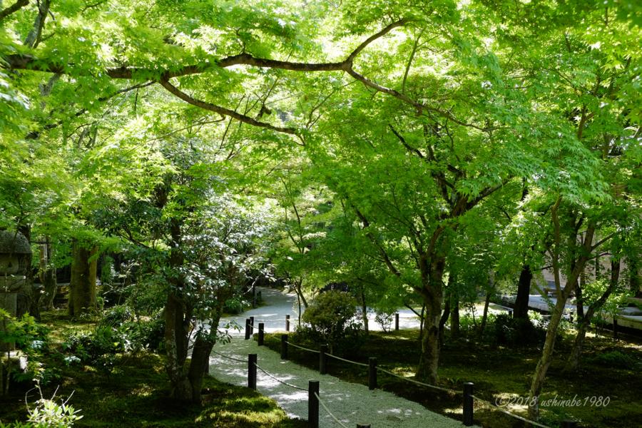 f:id:ushinabe1980:20180421124348j:image:w600