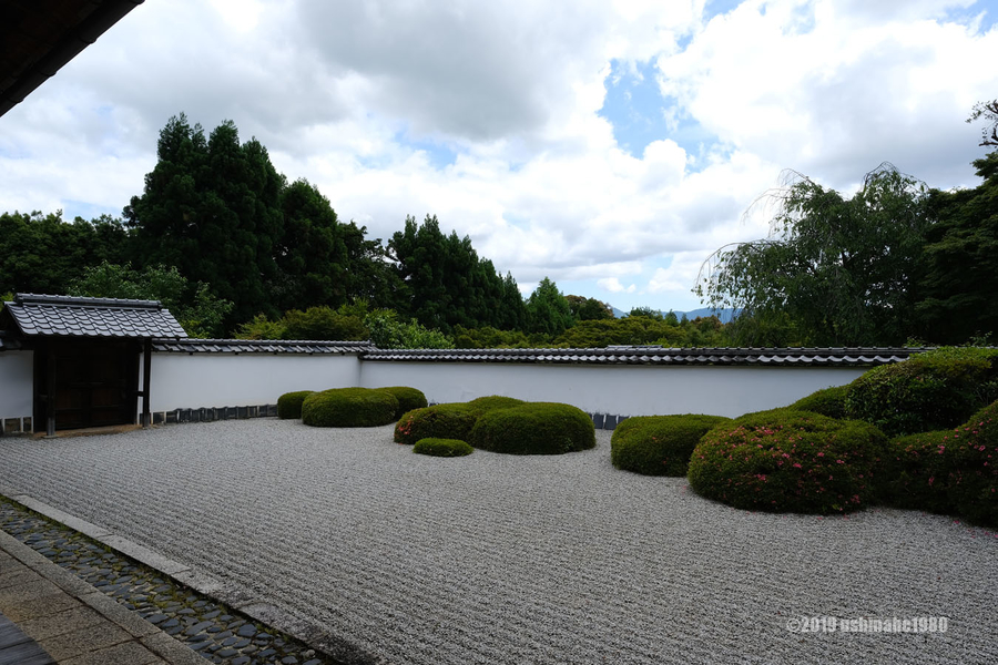 f:id:ushinabe1980:20190603105910j:image:w600