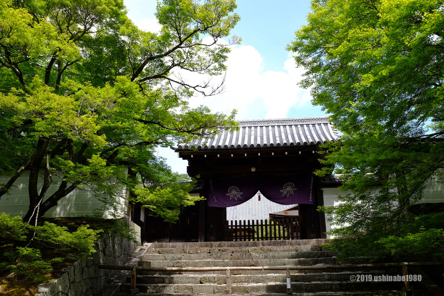 f:id:ushinabe1980:20190603133338j:image:w600