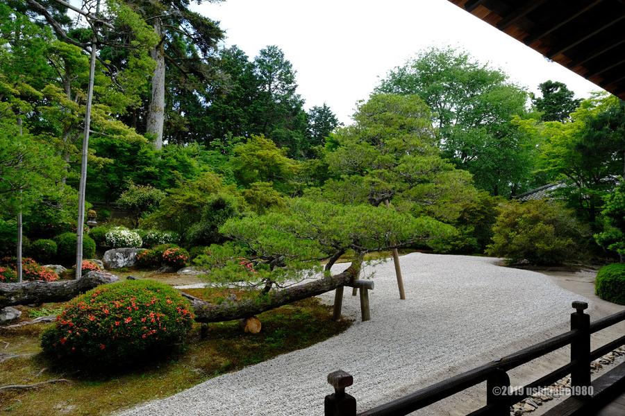 f:id:ushinabe1980:20190603134623j:image:w600