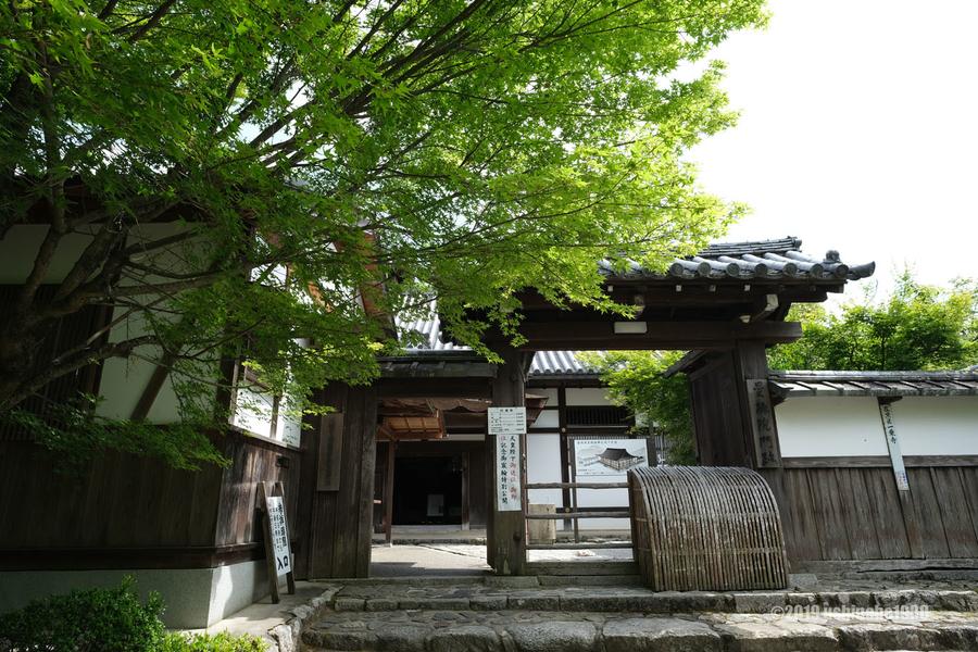 f:id:ushinabe1980:20190603140044j:image:w600