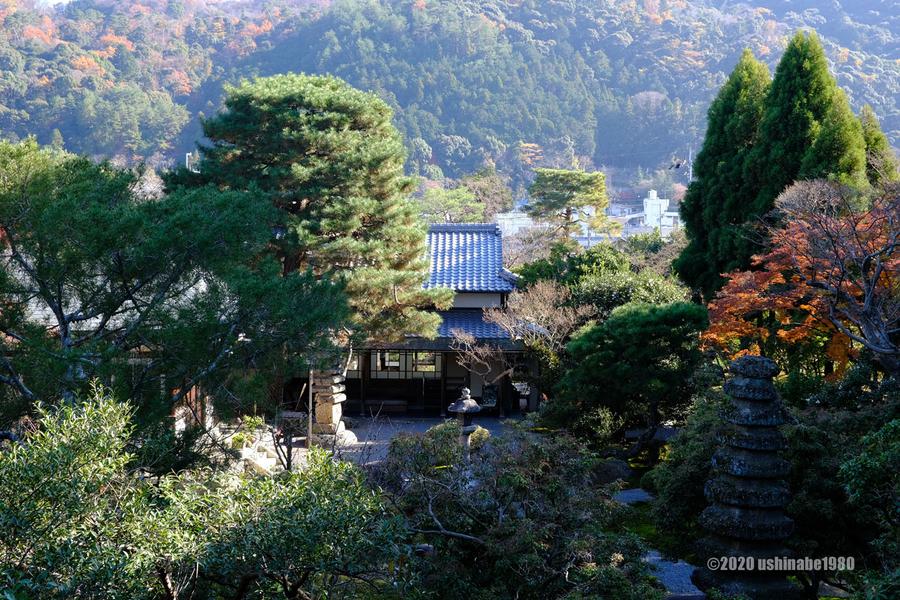 f:id:ushinabe1980:20200314132239j:image:w450