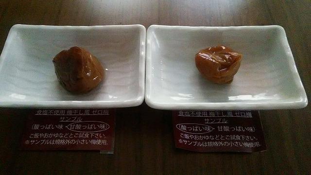 f:id:ushio-salt:20181028010036j:plain
