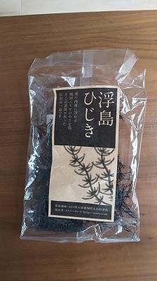 f:id:ushio-salt:20190521105147j:plain