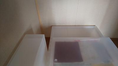 f:id:ushio-salt:20191101135828j:plain
