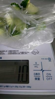 f:id:ushio-salt:20191108051333j:plain