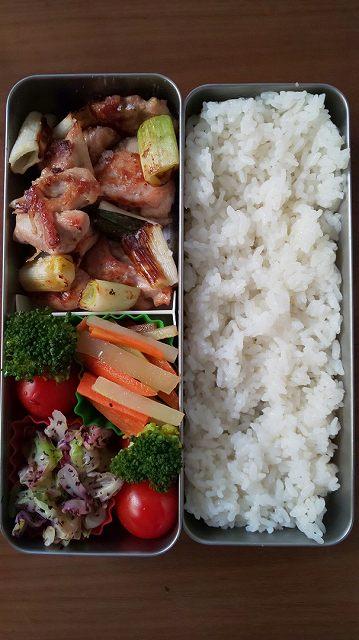 f:id:ushio-salt:20191204060242j:plain