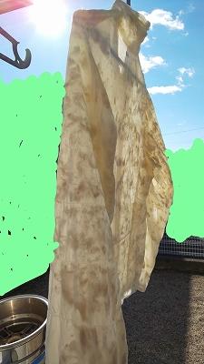 f:id:ushio-salt:20200210110022j:plain
