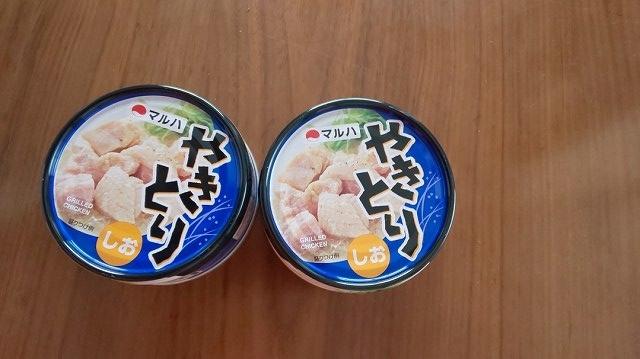 f:id:ushio-salt:20200601045819j:plain