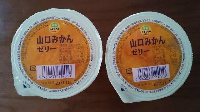 f:id:ushio-salt:20200616043500j:plain