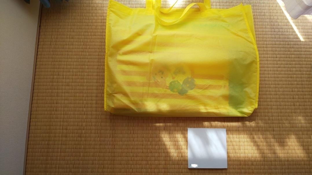 f:id:ushio-salt:20200925045720j:plain