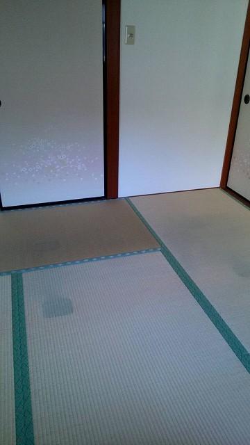 f:id:ushio-salt:20201004090433j:plain