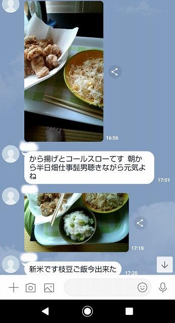 f:id:ushio-salt:20201004091903j:plain