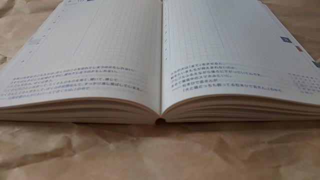 f:id:ushio-salt:20201030132448j:plain
