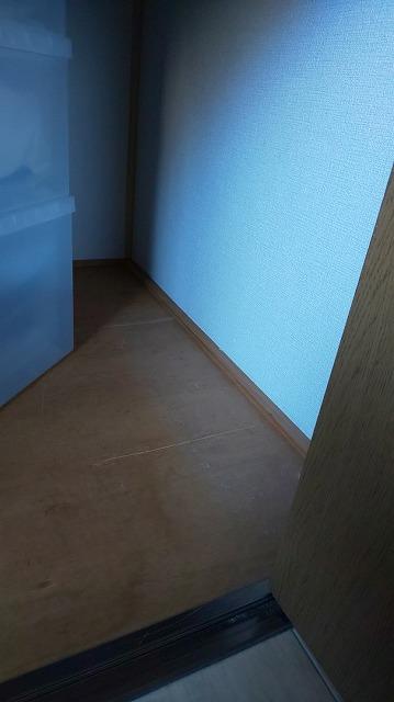 f:id:ushio-salt:20201105123408j:plain