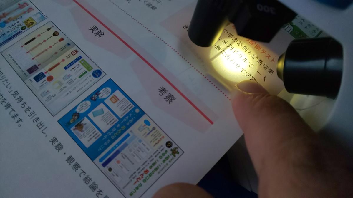 f:id:ushio-salt:20201110115121j:plain