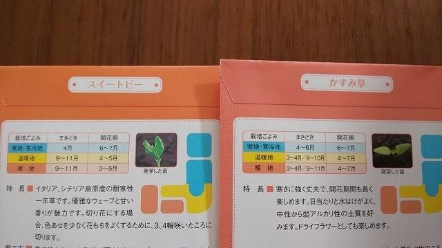 f:id:ushio-salt:20201116123614j:plain