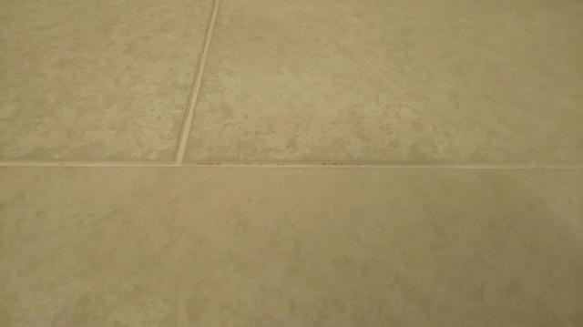 f:id:ushio-salt:20201213053740j:plain