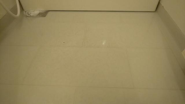 f:id:ushio-salt:20201213054552j:plain