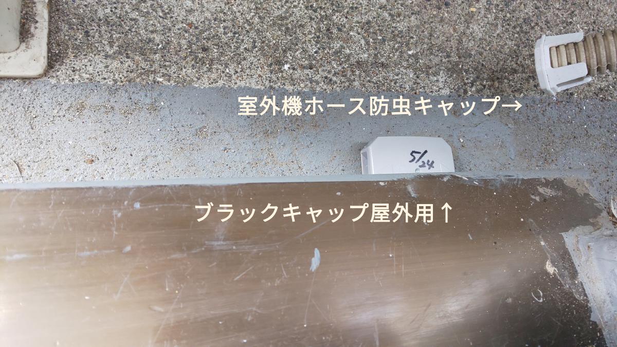 f:id:ushio-salt:20210525124341p:plain