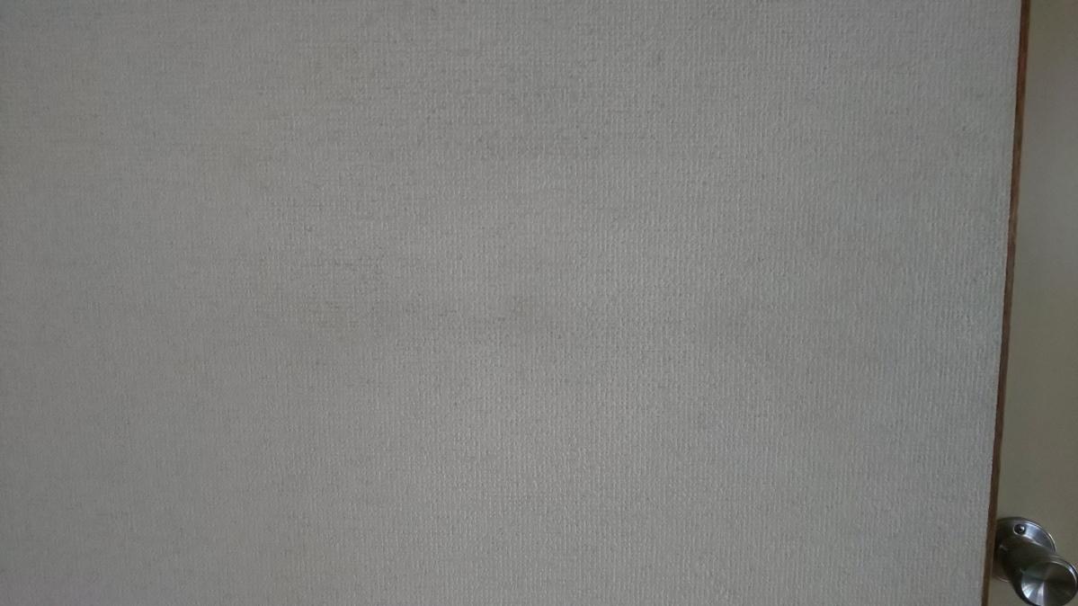 f:id:ushio-salt:20210527135242j:plain