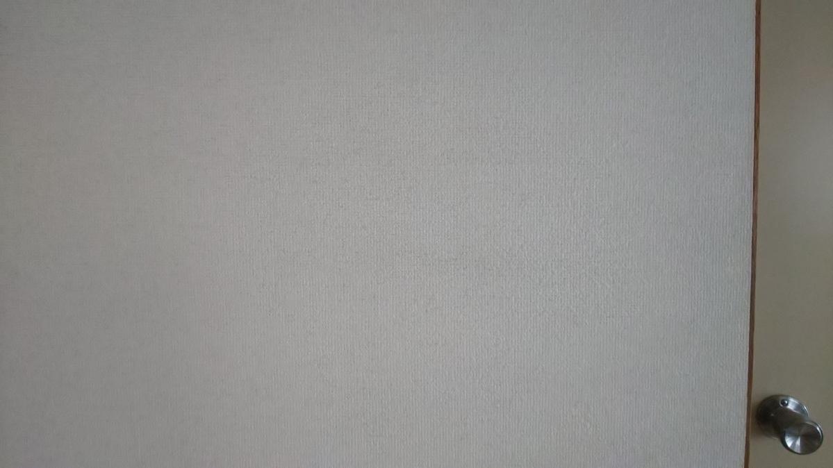 f:id:ushio-salt:20210527135343j:plain