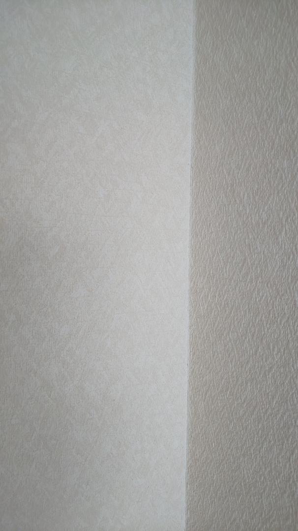 f:id:ushio-salt:20210528112955j:plain