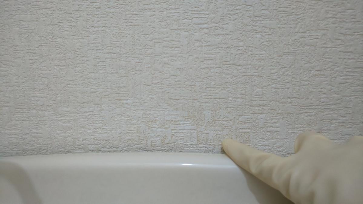 f:id:ushio-salt:20210529135417j:plain
