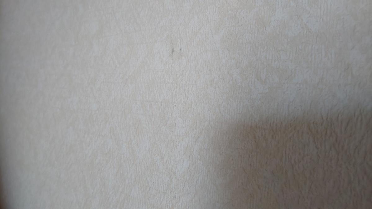f:id:ushio-salt:20210601113413j:plain