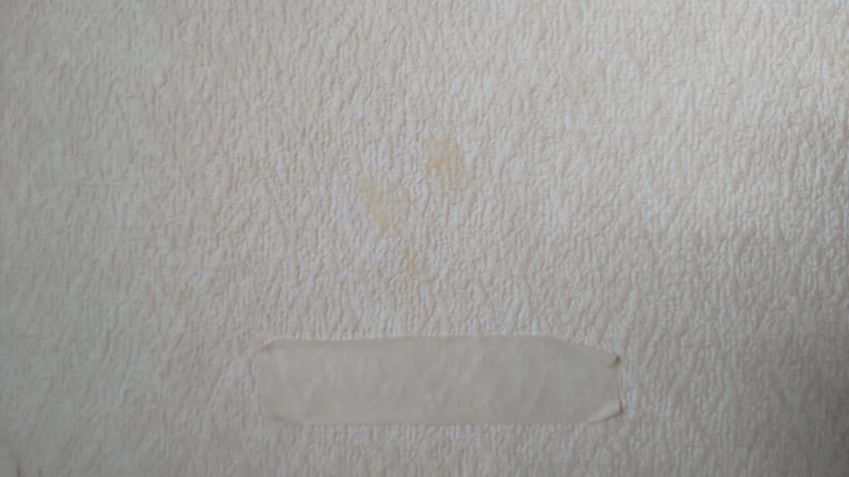 f:id:ushio-salt:20210601113530j:plain