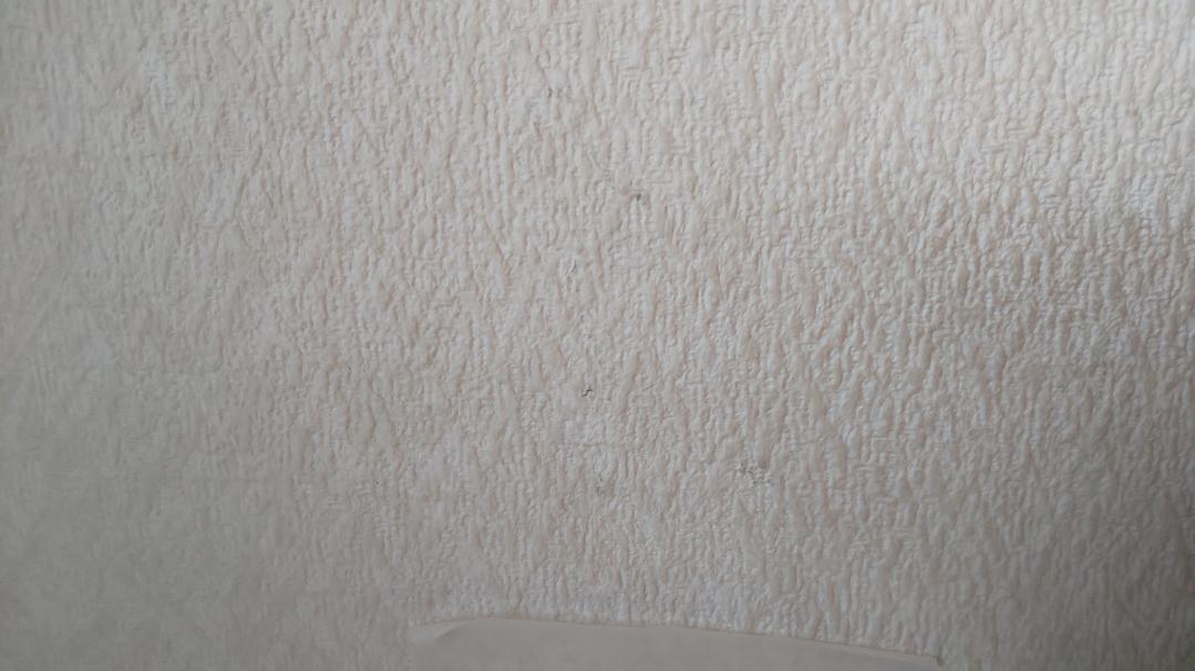 f:id:ushio-salt:20210601113645j:plain
