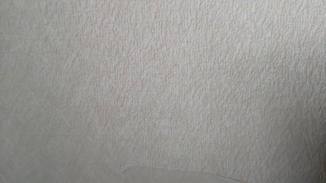 f:id:ushio-salt:20210601113721j:plain