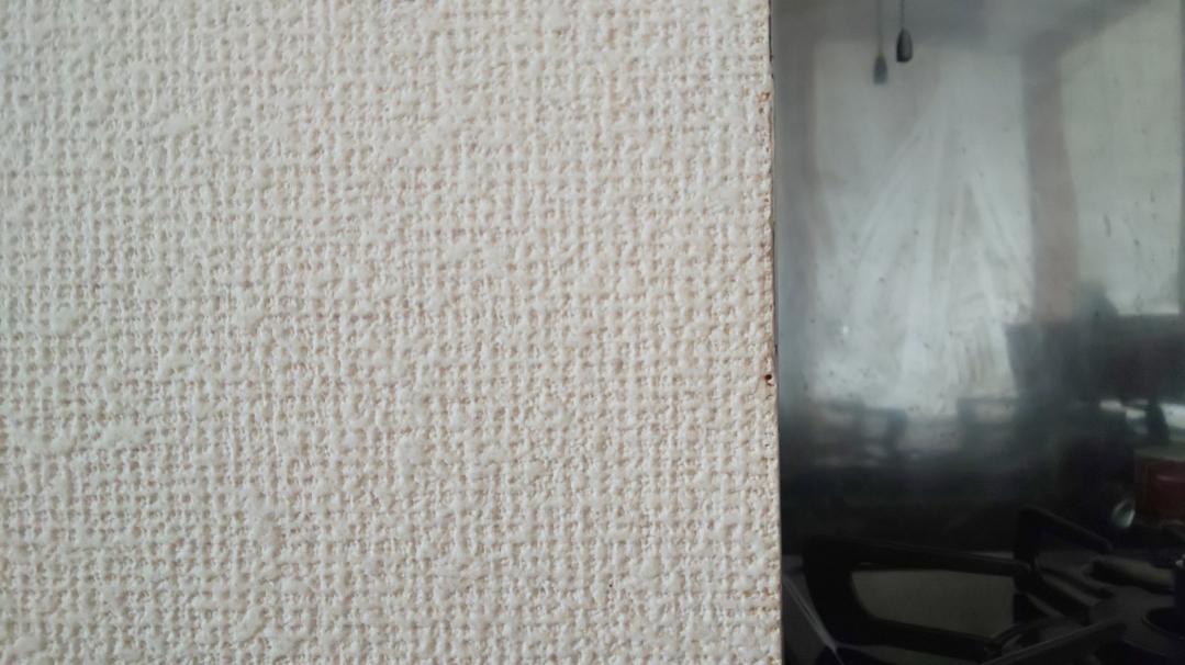 f:id:ushio-salt:20210602123736j:plain
