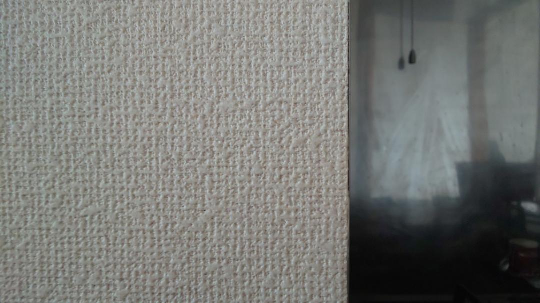 f:id:ushio-salt:20210602123810j:plain