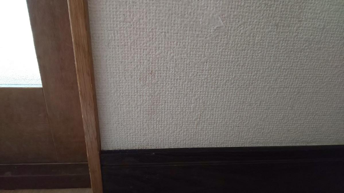 f:id:ushio-salt:20210603105023j:plain