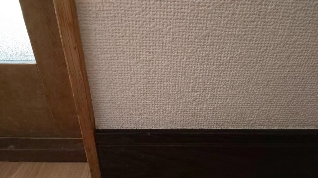 f:id:ushio-salt:20210603111456j:plain