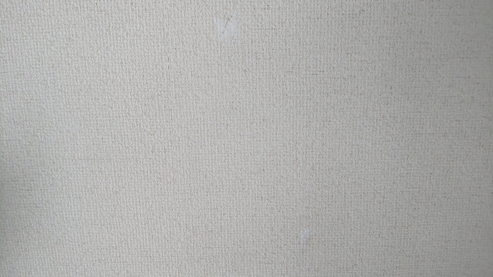 f:id:ushio-salt:20210621090502j:plain