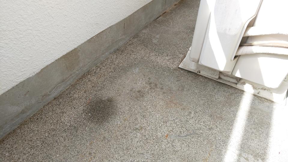 f:id:ushio-salt:20210908122831j:plain
