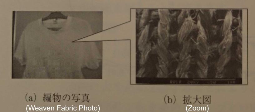 f:id:ushiostarfish:20190102160652p:plain