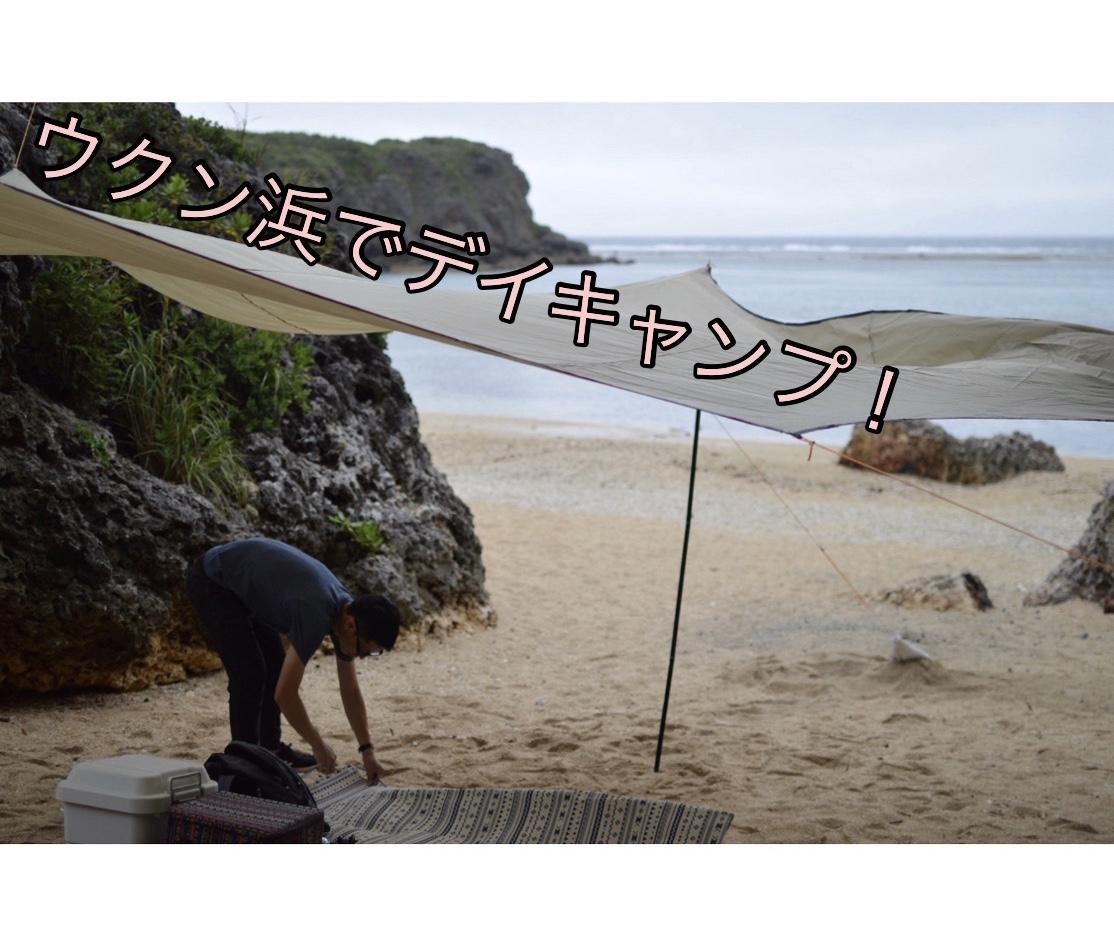f:id:ushisaku:20190425233441j:plain
