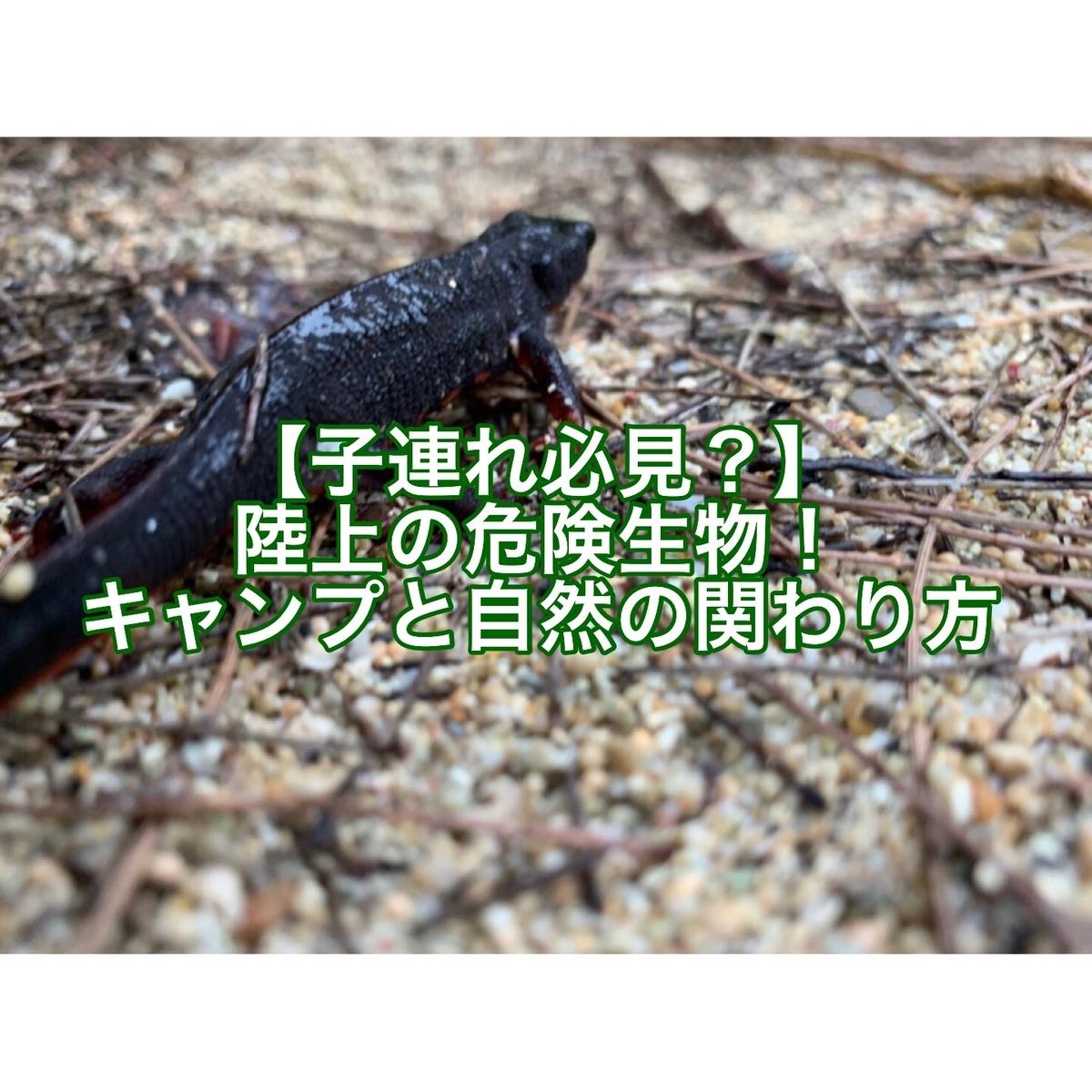 f:id:ushisaku:20190517192711j:plain
